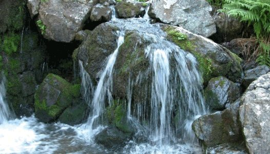 МАРШРУТ № 4: «Тургусунские озера»